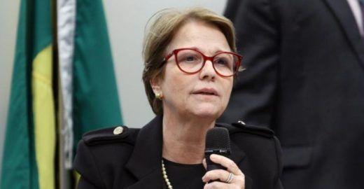 Ministra de Bolsonaro recomenda comer manga para matar a fome