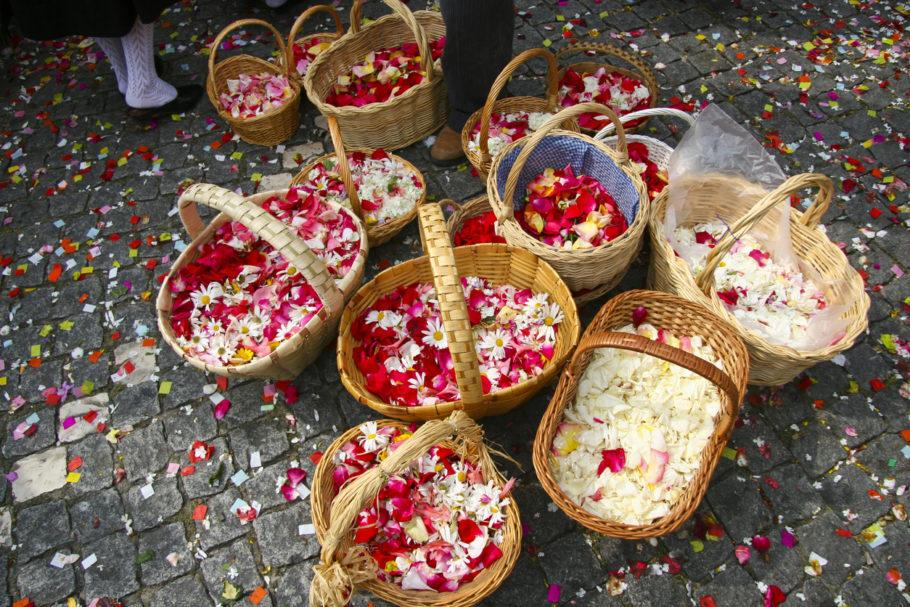 petalas de rosas