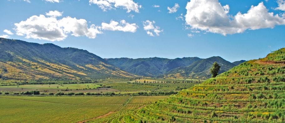 Valle de Colchagua