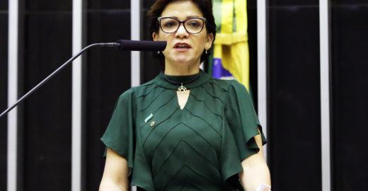 Deputada pede varredura em gabinete após acusar ministro