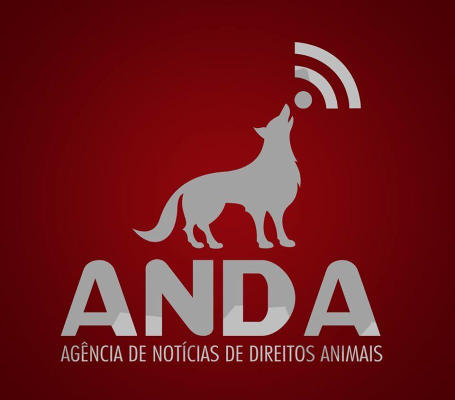 logo da ANDA