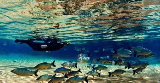 Bonito (MS) é alvo de campanha de recuperação e proteção da água