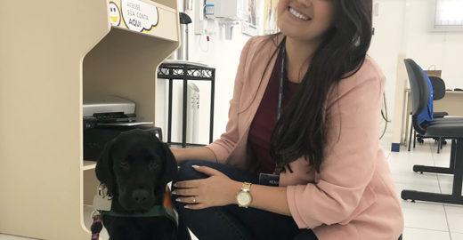 Cooperativa de crédito em SC acolhe cão-guia em treinamento