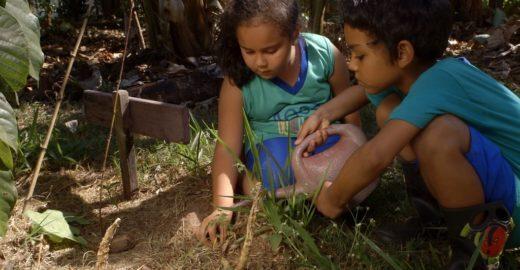 Série mostra iniciativas sociais transformadoras no Brasil