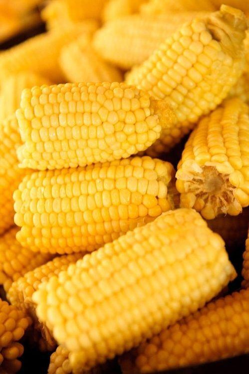 Hmmm, chega a manteiga derrete no milho cozido à vontade!