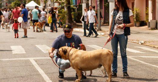 Festival transforma Rua dos Pinheiros em um calçadão cultural
