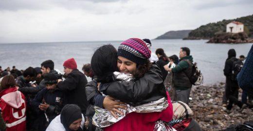 Projeto Flores para os Refugiados recebe apoio para 2018