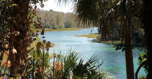 Flórida também é destino para lua de mel