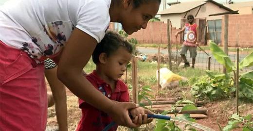 Lixão de Araraquara (SP) vira horta comunitária cuidada por todos