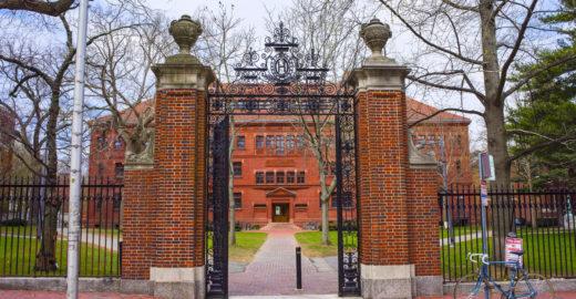 Harvard e MIT oferecem cursos para quem quer empreender
