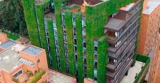 Colômbia abriga o maior jardim vertical do mundo; conheça