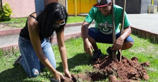 Estudantes mobilizam comunidade em SP para o plantio de árvores