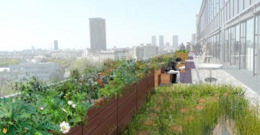 Plantações transformarão os charmosos telhados de Paris