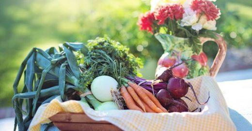 3 razões para consumir produtos orgânicos