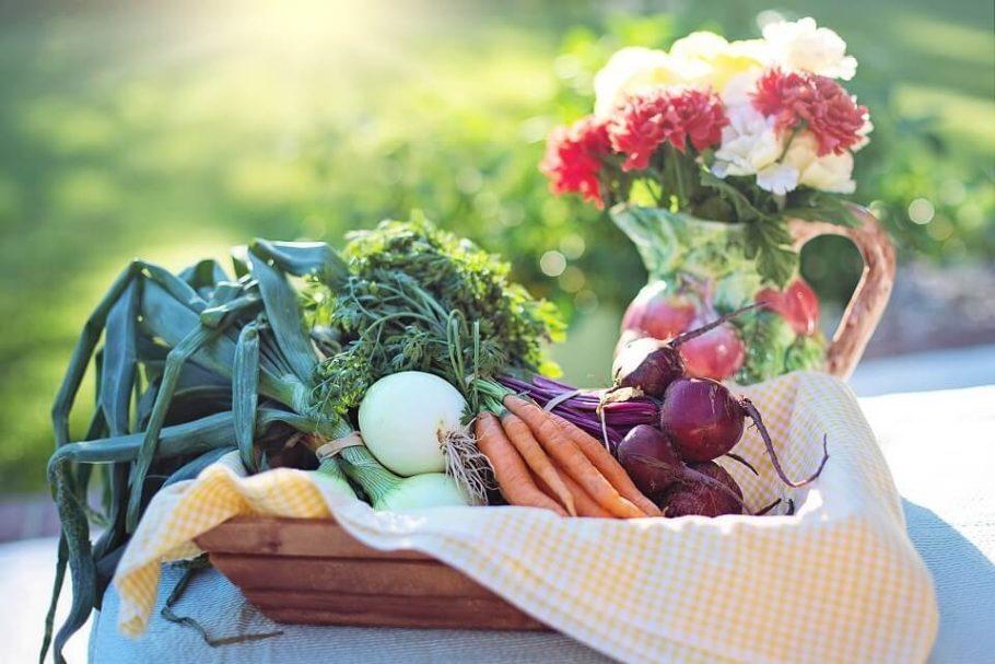 Produtos orgânicos preservam o meio ambiente e podem melhorar a sua saúde