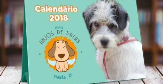Projeto que resgata animais das ruas lança calendário exclusivo