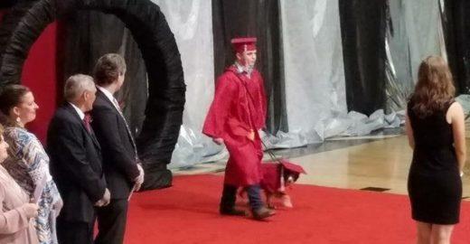 Cão salva vida de aluno e escola permite graduação especial