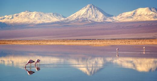Deserto do Atacama tem gêiseres e lagoas a 4.000 metros
