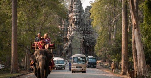 Passeios com elefantes chegam ao fim no Camboja