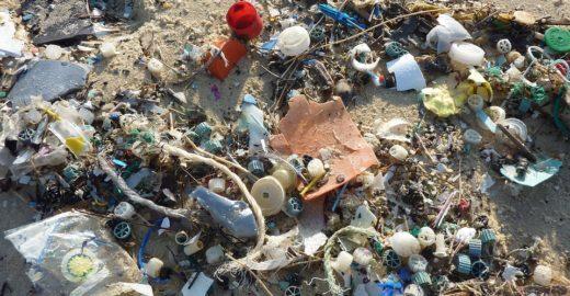 Cientistas alertam que haverá mais plástico que peixes nos oceanos
