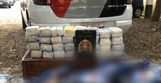SP: Homem compra sabão em pó, mas dentro da caixa vem cocaína