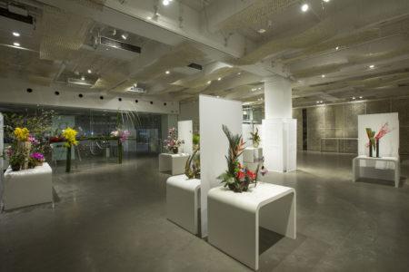 exposição ikebana na japan house
