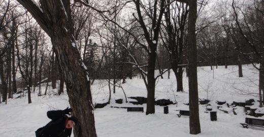 Viagem de inverno: machucados que o frio extremo pode causar