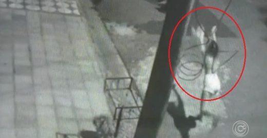 Câmeras flagram jovem arremessando gato em direção a cachorro
