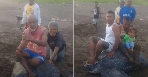 Fotos de grupo 'cavalgando' tartaruga na Indonésia gera revolta; veja