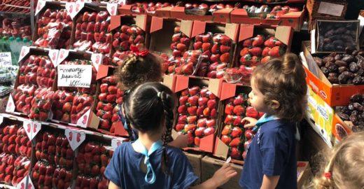Por que é importante que crianças pequenas dialoguem com as cidades?