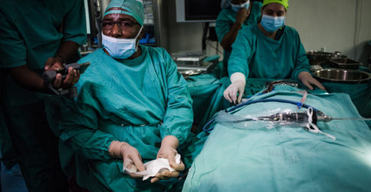 Médico cura surdez com primeiro transplante de ouvido