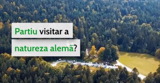 Criticada por Bolsonaro, Alemanha publica vídeo sobre florestas