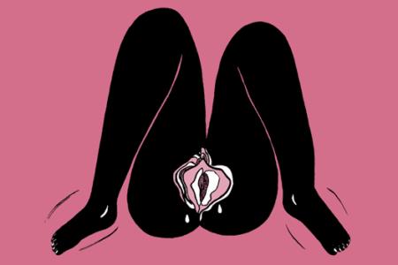 ilustração de uma vagina