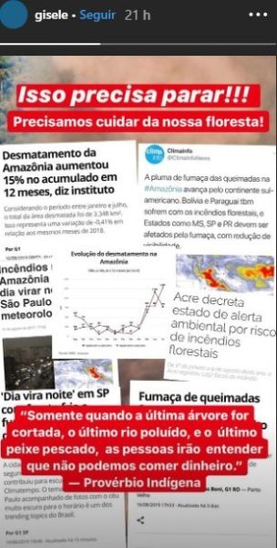 Anitta famosos Bolsonaro Amazônia