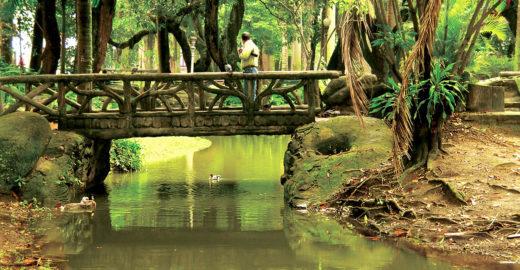 Parques e jardins no Rio de Janeiro para se conectar com a natureza