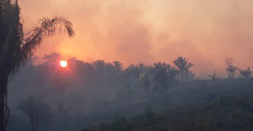 Governo do Acre decreta estado de emergência por queimadas