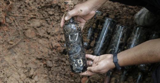 Vinícola em São Roque resgata a tradição do vinho dos mortos