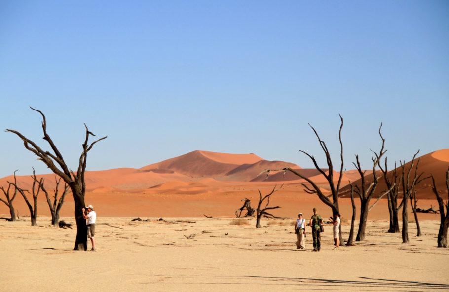 Dead Pan, na região de Sossusvlei, na Namíbia