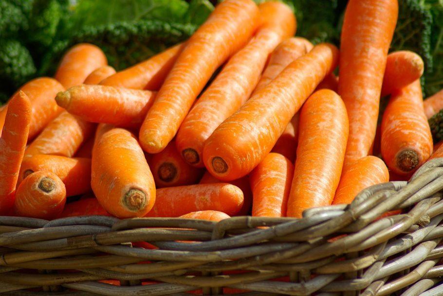 <b>Cenoura </b> - Cada 100 gramas possui cerca de 43 kcal e três gramas de fibra, o que novamente gera sensação de saciedade. Isso faz com que as refeições seguintes sejam feitas de forma mais controlada. É considerada altamente nutritiva pelos elevados teores de pró-vitamina A (ou caroteno). E o melhor: os carotenos não são destruídos pelo cozimento.