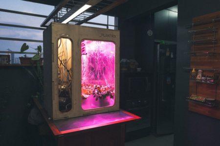 Plantrix Estufa automatizada que usa software e hardware livres para reaproximar as pessoas das plantas exposta no festival de tecnologia Red Bull Basement