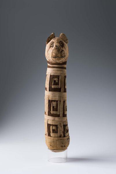 Múmia de gato, exposição do Egito no CCBB