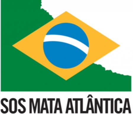 A campanha contra as queimadas no Brasil cobra medidas efetivas do poder público