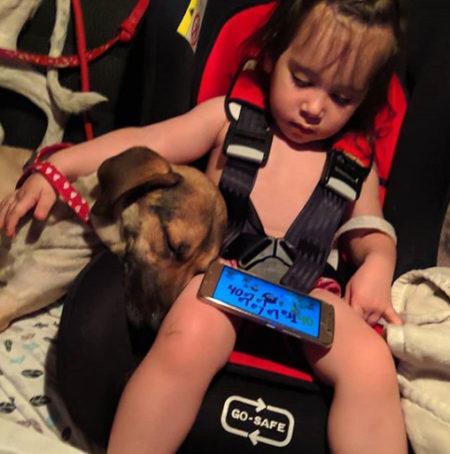 criança assistindo vídeo no celular ao lado de cachorro