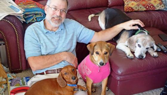 senhor e tres cães