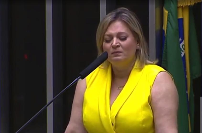 Atacada pela milícia de Bolsonaro, Joice Hasselmann chora pelos filhos