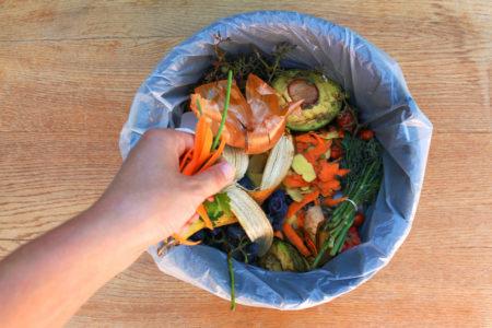 reciclagem do lixo orgânico em casa