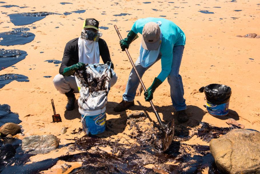voluntários retiram óleo do mar