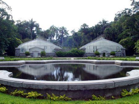 jardim botânico são paulo lugares natureza