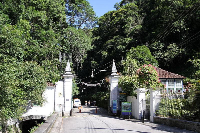 Floresta da Tijuca, opção de turismo acessível no RJ