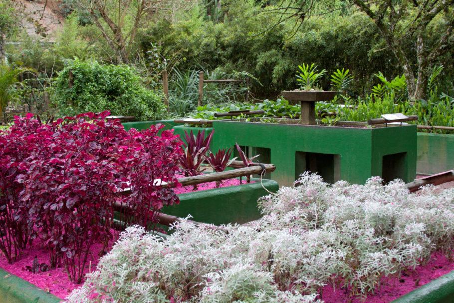 Jardim Sensorial, no Jardim Botânico do RJ, opção de turismo acessível